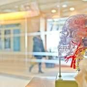 Alzheimer's & dental health